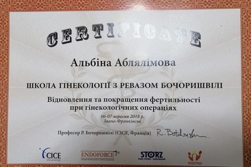 diplom_ablyalimova (2)