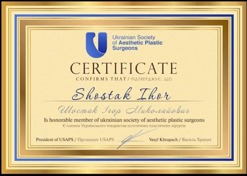 shostak-diplom (10)