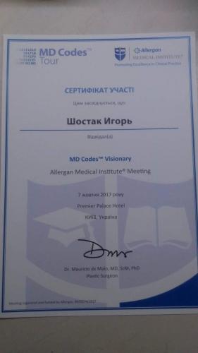 shostak-diplom (14)