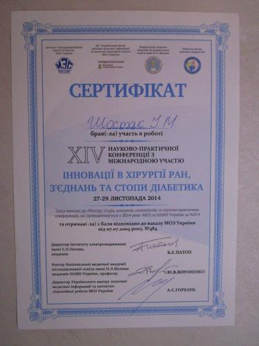 shostak-diplom (29)