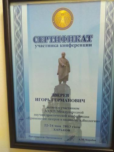 zverev-igor-germanovich (31)